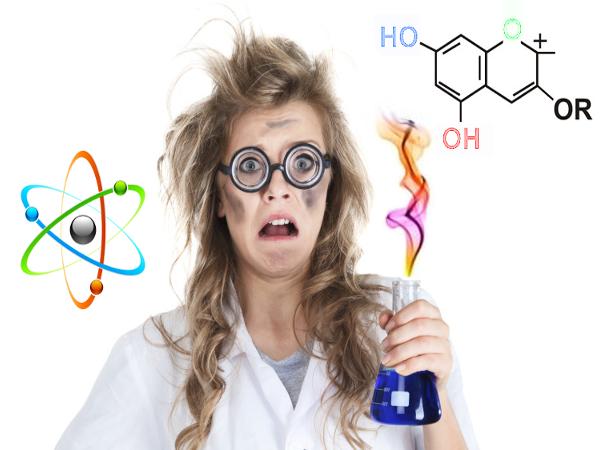Trakā zinātnieka noslēpums